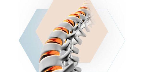 Bone Biologics Study Shows Bone Formation in Spine Model