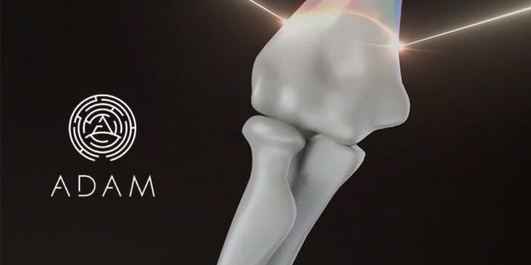 ADAM Project to Launch Clinical Trials of 3D-Printed Synthetic Bone