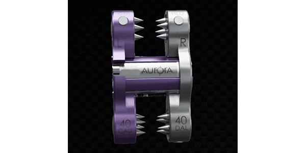 Aurora Spine Plans Study of ZIP Interspinous Fixation
