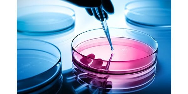 Fuse Medical Launches FuseChoice Biologics Portfolio