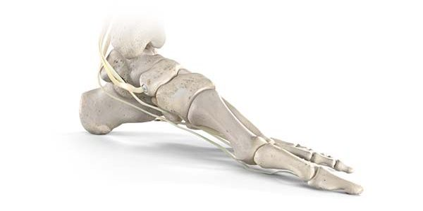 Stryker Launches New Tendon Fixation Device